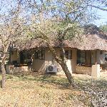 Bonamanzi Game Reserve Foto
