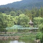 Zijin Shan (Purple & Gold Mountain)