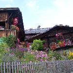 flowers in Murren