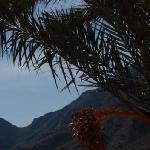 Camping Naturista El Portus Foto