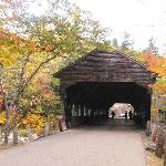 covered bridge in the area