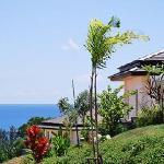 Hillside seaview
