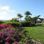 Royal West Indies