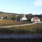 View towards Gevrey Castle