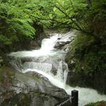 Aliran sungai Nishizawa