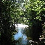 Hanging gardens of Bridgend, Wales