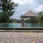 The beautiful pool!