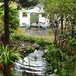 le jardin à l'arrière, avec le bassin illuminé la nuit