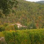 Autumn in Gaiole in Chianti