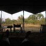 Blick aus dem Zelt bei Tag
