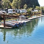 Marina with boat rentals & launch ramp