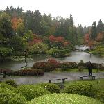 Japanese Garden from Hill