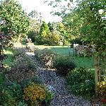 Part of the lovely garden area