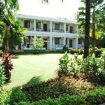 The lush landscape garden