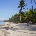 Tubod Marine Sanctuary at front of Coco Grove resort, Siquijor, Visayas, Philippines