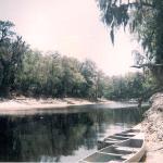Suwanne River, Florida