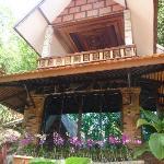 khao sok las orquideas resort