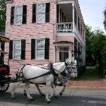 take a carriage ride when you visit us