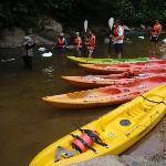 great day of kayaking - must do! rainforestkayaking.com!!!