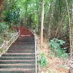Chiang Saen Hill Steps To Abbot Residence