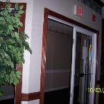 View from bar into hallway- tree in front of glass for safety
