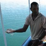 our friendly guide on a trip to dolphin bay