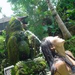 Ubud Sari Health Resort Photo