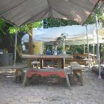 Everglades International Hostel Foto
