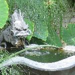fountain gargoyle