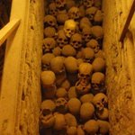 A crate of human skulls. It's worth mentioning that there are about 30 more crates just in this