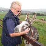 Donkey Sanctuary at Lisscarroll