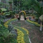 Callaway Gardens Aufnahme