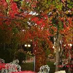 Lakeside restaurant autumn seating