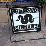 Photo of American International Rattlesnake Museum