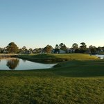 Sandestin Golf  Resort - Raven, Burnt Pine, Baytowne, The Links