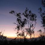 the beautiful desert sunset