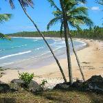 Praia paradisiaca da Cueira