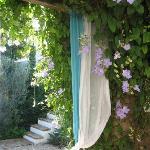 Casa Rosada garden: Garden: the gazebo