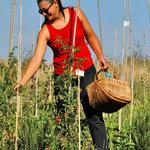 Photo of Agriturismo Podere Doglio