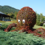 Akashi Kaikyo National Gorvernment Park
