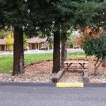 Picnic bench area