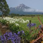 Mt. Taranaki