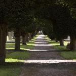 St.Marys churchyard opposite St Michaels Restaurant