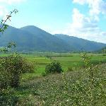 Passeggiando nei dintorni del B&B, per i sentieri di Montisola!