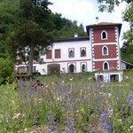 Villa Rosa from private drive