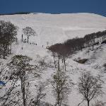 5月連休まではやつなみまでスキーでただいま!!