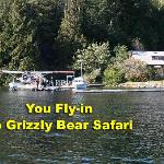 Grizzly Safari - Grizzly Tours