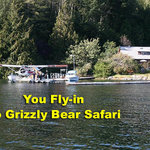 Grizzly Bear Safari - Grizzly Tours