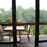 View onto the balcony