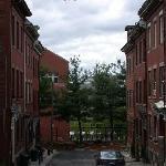 Quiet Streetscape